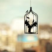 caged_ipadr.jpg