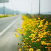 roadside_ipadr.jpg