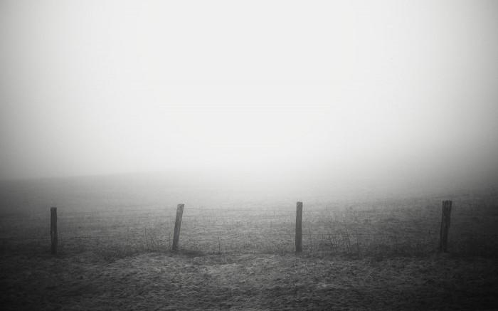 Blue Ridge Fog 1