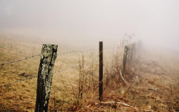 Blue Ridge Fog 2