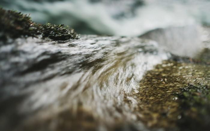 Flow v1