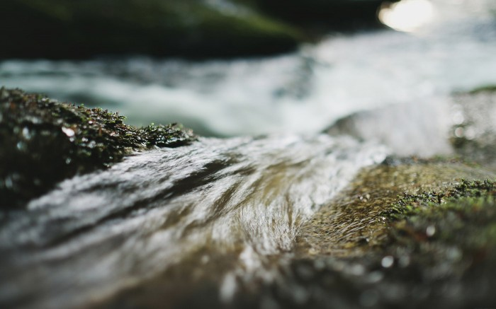 Flow v2