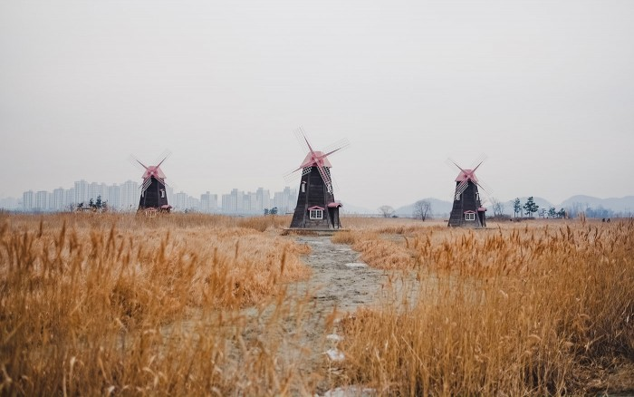 Salt Mill